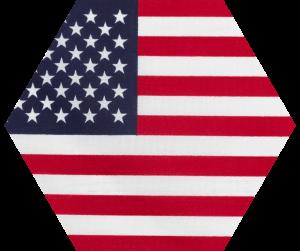 Omegle United States